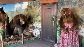 Поездка в горный Алтай #1, тур База Три Медведя. Чемал, Камышинский водопад, Манжерок .