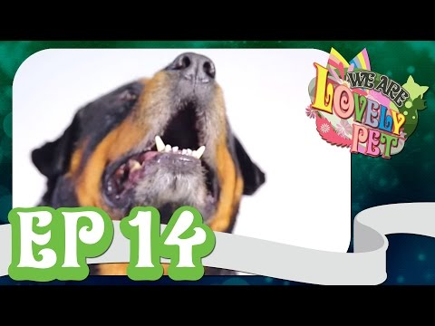 "VRZO - We Are Lovely Pet - ""18 หลุม!!"" [Ep.14] 18+"