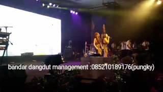 Video Duo anggrek -oplosan cover version download MP3, 3GP, MP4, WEBM, AVI, FLV Oktober 2017