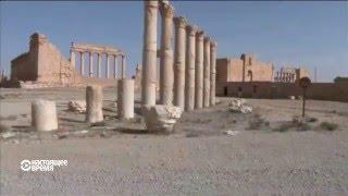 Как выглядит Пальмира после боевиков «ИГ»?