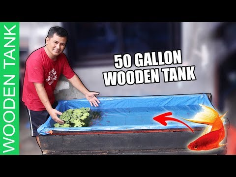 12 DIY Steps - BUILDING WOODEN TANK FOR LIVE BEARER FISHES ( STEP BY STEP TUTORIAL)