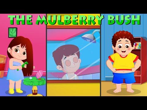 Mulberry Bush Nursery Rhyme | Children Songs with Lyrics | Kids Morning Routine