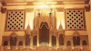 J.S.Bach Herr Gott nun sei gepreiset BWV 601 .Rosario Folino Petronà