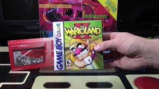 Swap Meet and February Pick Ups | Nintendo Collecting