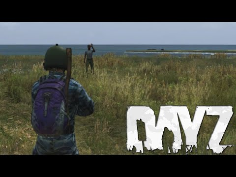 2 HACKERS 1 GOVER (DayZ Standalone)