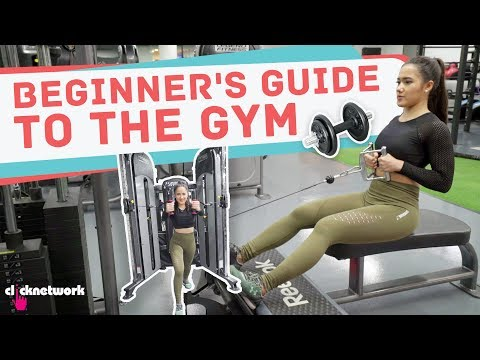 Beginner's Guide To The Gym - No Sweat: EP8