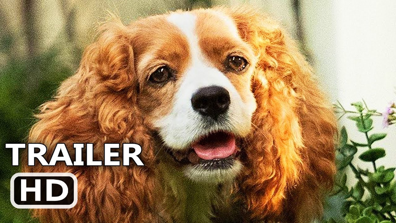 Lady And The Tramp Trailer 2019 Disney Live Action Movie Youtube