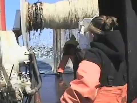 Northeast Fisheries Observer Training Video