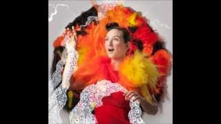 Watch My Brightest Diamond In The Beginning video