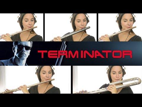 The Terminator: Love Theme - Flute Cover