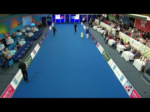 World Bowls Tour: SIBA Gents Scottish Masters 2017 Supported by JACK HIGH INSURANCE