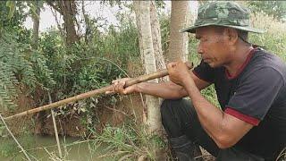 กบตัวนี้ถึงกับต้องยิงซ้ำถึงสี่นัดกันเลย ! ยิงกบด้วยพลุไม้ไผ่การหากินของคนอีสาน shooting a Bamboo gun