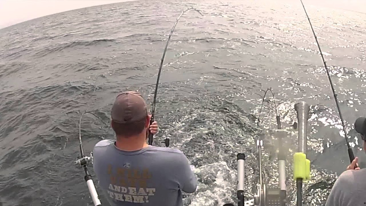 Pirate charter oak orchard youtube for Oak orchard fishing report