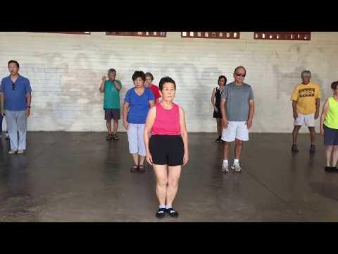 Aina Koa Park Tai Chi on Discoverer's Day everydaytaichi lucy Honolulu Hawaii