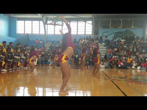 "Howard High School ""Tiger Pride"" Dance Round 1"