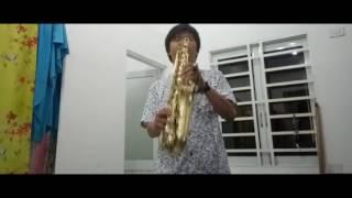 Mùa Hoa Tuyết Saxophone Cover