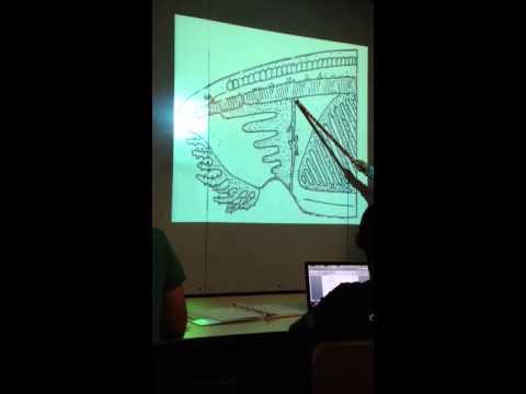 Comparative anatomy lab exam 1 - YouTube
