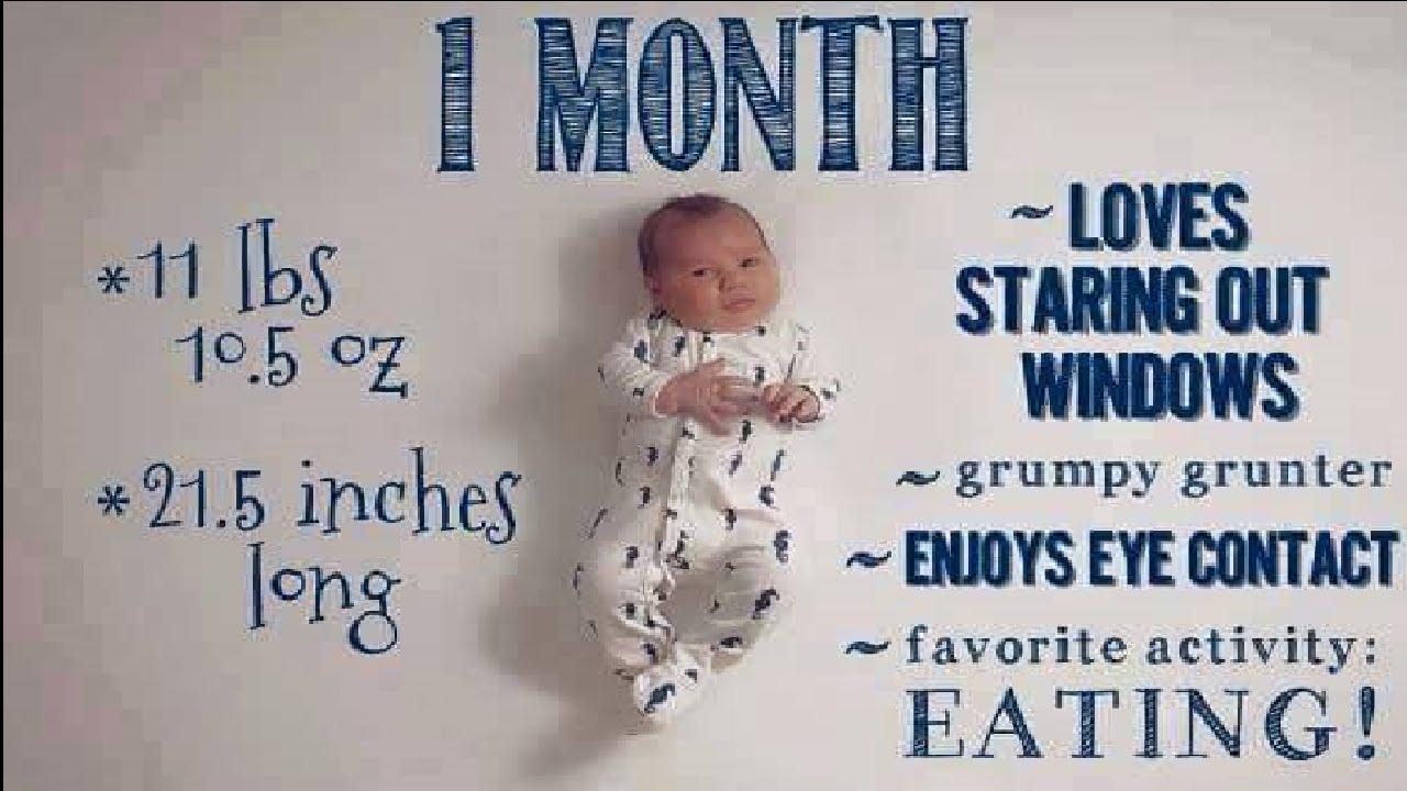Infant Development Stages Chart. Next Image