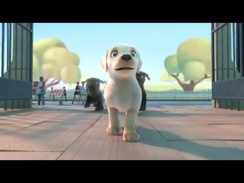 Пип | Pip | Мультик для детей про доброго щенка. Щенок спасатель.