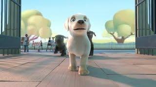Пип | Pip | Мультик для детей про доброго щенка