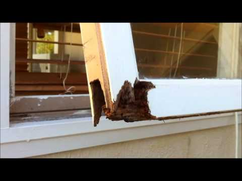 Fix Wood Rot On Window Frame Wmv