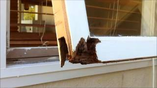 fix wood rot on window frame.wmv