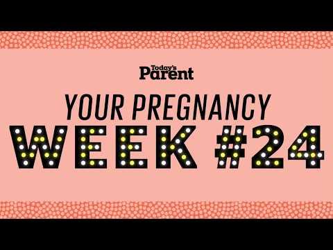 Your Pregnancy: 24 Weeks