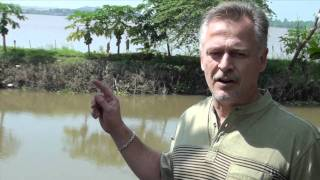 3 Minute Market Insight - Episode #7 - Vietnam Pangasius Fish Farms