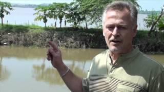 3 Minute Market Insight - Episode #7 - Vietnam Pangasius Fish Farms