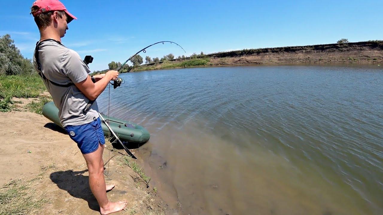 Сазан ловля на закидушку