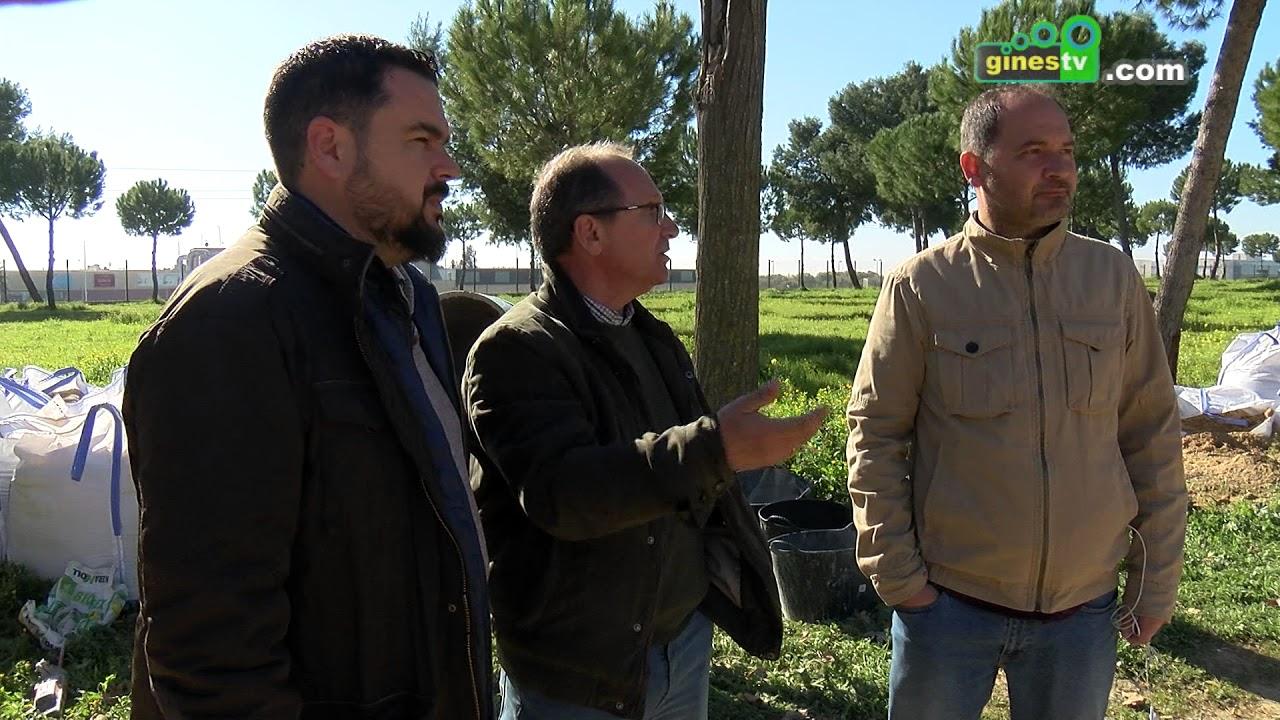 Importantes mejoras en las infraestructuras del Pinar de San Ginés