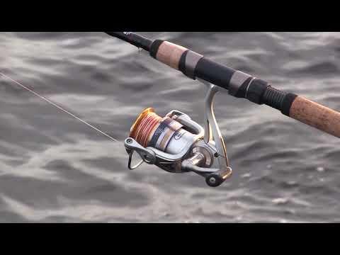 большое хобби с николаем валуевым охотник и рыболов