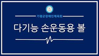 #가평군장애인체육회_다기능손운동용볼지도영상