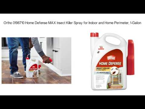 Best Roach Killer Review | How To Get Rid of Roaches Fast