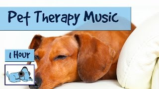 Repeat youtube video Pet Therapy - Music for Dogs, Relaxing Therapy Music to reduce anxiety , De-stress your Dog