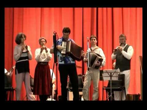 The Rose of Allandale - Accordions and Whistles