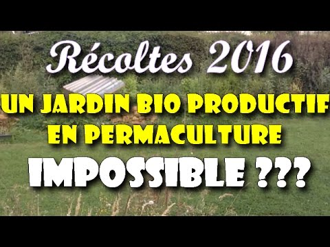 un potager bio productif en permaculture impossible r coltes 2016 youtube. Black Bedroom Furniture Sets. Home Design Ideas
