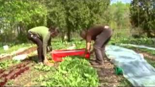 Detroit - Gemüse statt Autos (2/2) arte reportage - 15.09.2010