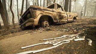Waldbrände in Kalifornien: Familie filmt Flucht aus dem Flammenmeer
