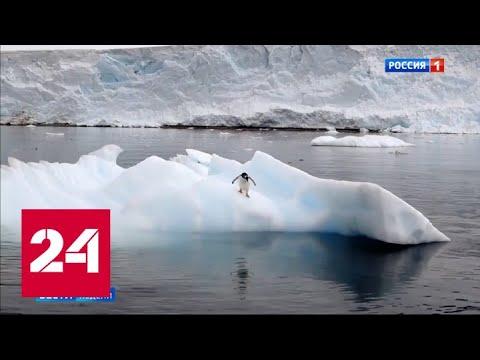 Антарктида не прощает ошибок - Россия 24