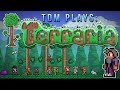 "Terraria | ""THE AMAZING MARVIN!"" 