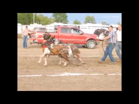 W. Otter Tail Fair Horse Pulls 2017   Most watched video in my list.