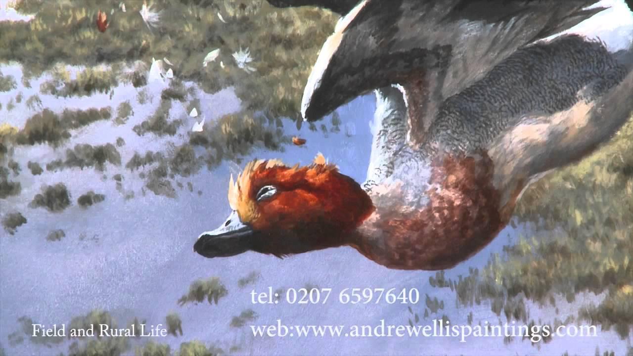 Wildlife Artists Paintings