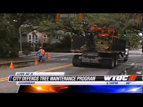 WTOC: City of Savannah Defends Tree Program