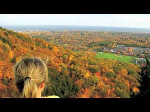 A 2 Minute Tour of Quinnipiac University