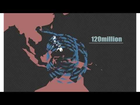 Save the Sardines of Sulu-Celebes Sea