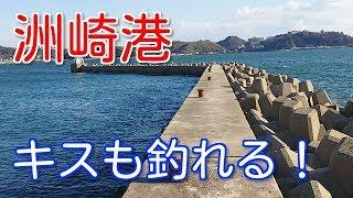 【愛知釣り】洲崎港の釣り場ポイント紹介!キスや根魚狙えるよ!【東幡豆】