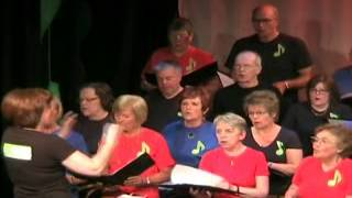 Help - Ards Voice, Newtownards