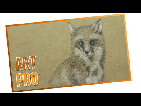How to draw a Fox step by step - easy and quick - YouTube