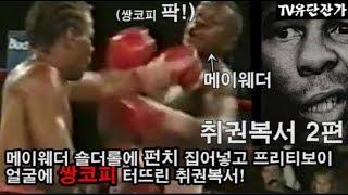 취권복서 2편 밉상 메이웨더 쌍코피 터뜨리다! (feat.메이웨더가 인정한 취권!)